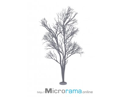 Microrama Eiche 10 cm Masstab N