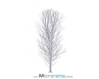 Bouleau à deux branches de 10 cm échelle HO