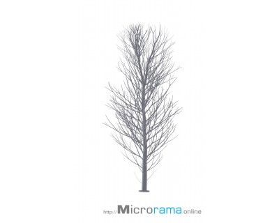 Microrama Birch 10 cm scale HO