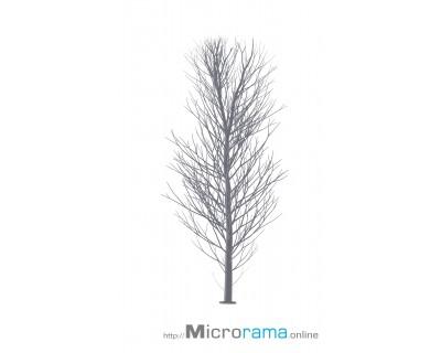 Microrama Bouleau de 10 cm échelle HO