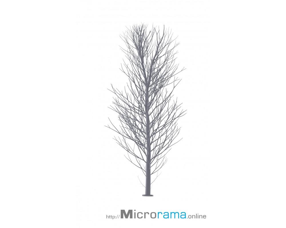Microrama Birke 10 cm Masstab HO