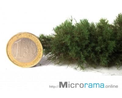 Nadelolz 1mm Grasfaser Magifloc