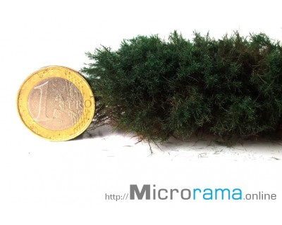 Dunkelgrün 2 mm. Statisches Gras in Magifloc-Faser